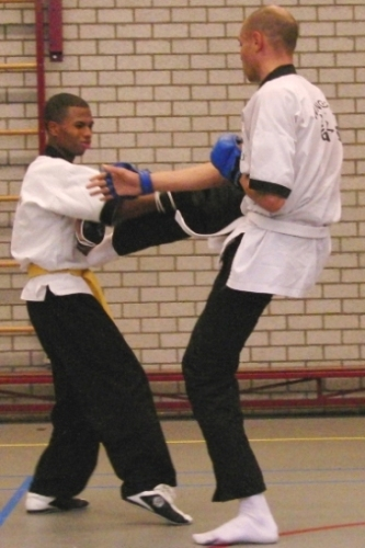Wing Chun Schop